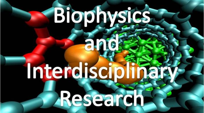 Biophysics and Interdisciplinary Research